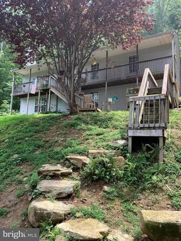73 Petes Place, STANARDSVILLE, VA 22973 (#VAGR103040) :: The Licata Group/Keller Williams Realty