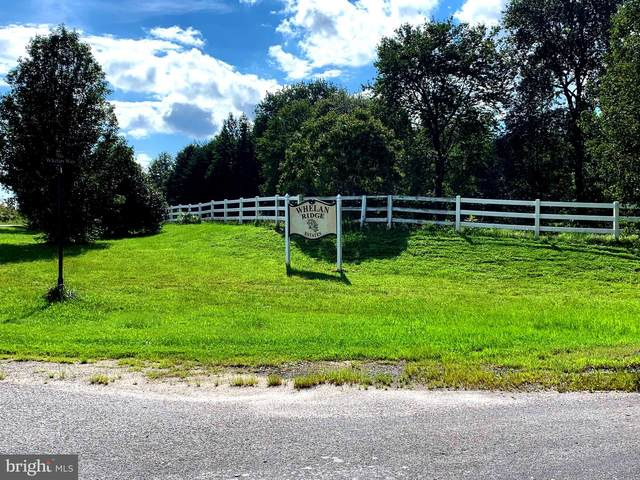 5517 Whelan Way, PARTLOW, VA 22534 (#VASP224454) :: ROSS | RESIDENTIAL