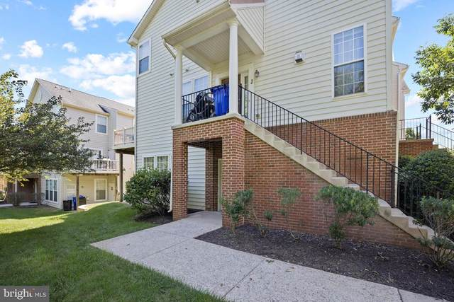 6508-G Wiltshire Drive #101, FREDERICK, MD 21703 (#MDFR269684) :: SP Home Team