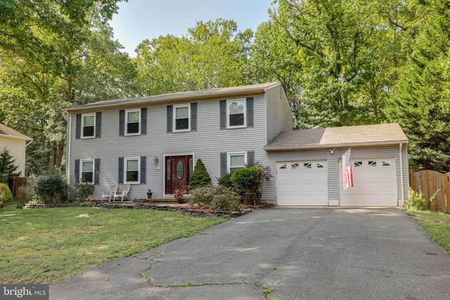 8 Olympic Drive, FREDERICKSBURG, VA 22408 (#VASP224652) :: Debbie Dogrul Associates - Long and Foster Real Estate