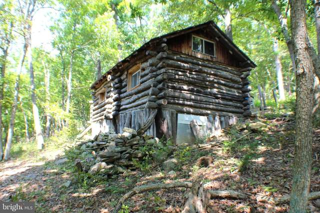 2254 High Knob Road, OLD FIELDS, WV 26845 (#WVHD106292) :: John Lesniewski | RE/MAX United Real Estate