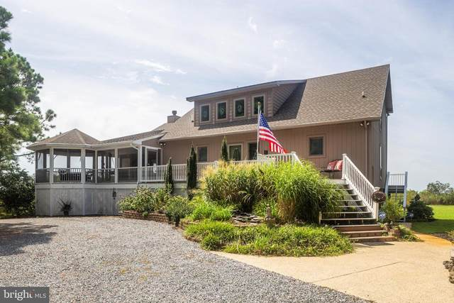 20104 Nanticoke Road, NANTICOKE, MD 21840 (#MDWC109546) :: Ultimate Selling Team