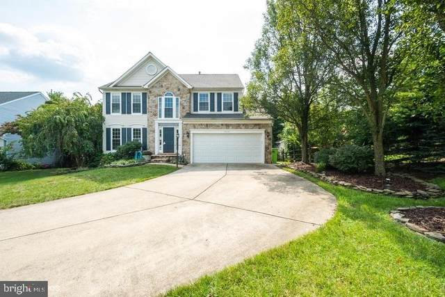 43161 Malloch Place, LEESBURG, VA 20176 (#VALO420162) :: Debbie Dogrul Associates - Long and Foster Real Estate