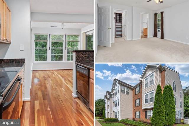 8700 Natures Trail Court #202, ODENTON, MD 21113 (#MDAA445200) :: Advon Group