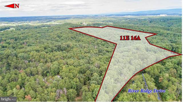 River Ridge Drive, MIDDLETOWN, VA 22645 (#VAWR141346) :: Network Realty Group