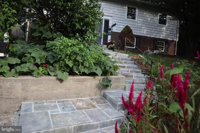 10111 Rhode Island Avenue, COLLEGE PARK, MD 20740 (#MDPG579946) :: Tom & Cindy and Associates