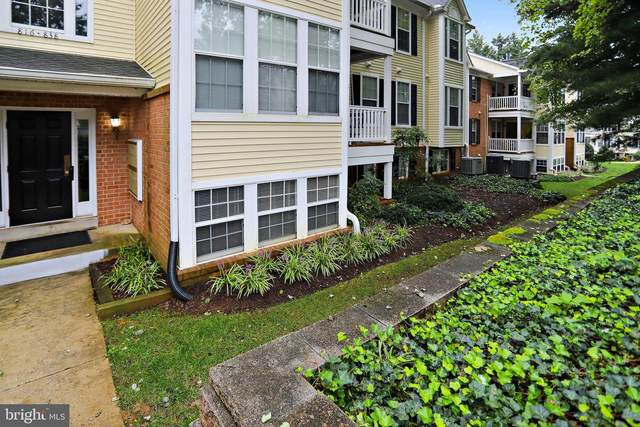822 Southern Hills Drive, ARNOLD, MD 21012 (#MDAA445382) :: Jacobs & Co. Real Estate