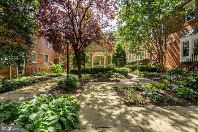 449 Old Town Court, ALEXANDRIA, VA 22314 (#VAAX250604) :: Debbie Dogrul Associates - Long and Foster Real Estate