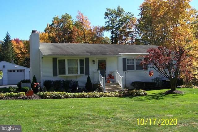 241 Gameland Drive, TAMAQUA, PA 18252 (#PASK132274) :: The Joy Daniels Real Estate Group