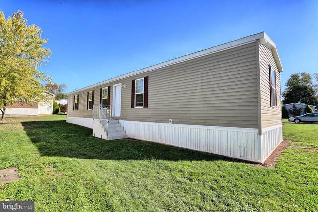 19 Siding Lane, MILLERSBURG, PA 17061 (#PADA125558) :: Liz Hamberger Real Estate Team of KW Keystone Realty