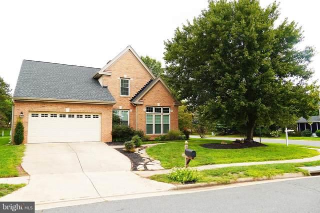 43958 Rochelle Court, ASHBURN, VA 20147 (#VALO421104) :: Jennifer Mack Properties