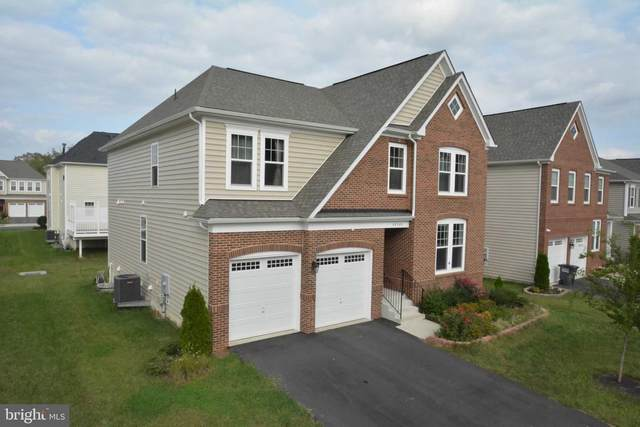 42340 Abney Wood Drive, CHANTILLY, VA 20152 (#VALO421116) :: The Vashist Group