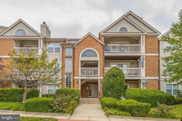 7502 Ashby Lane K, ALEXANDRIA, VA 22315 (#VAFX1154524) :: Tom & Cindy and Associates