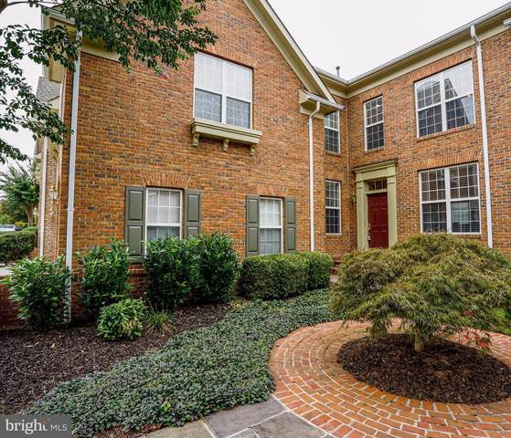 18486 Lanier Island Square, LEESBURG, VA 20176 (#VALO421178) :: The Sky Group