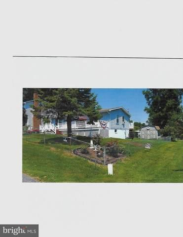 3620 7TH Street, NORTH BEACH, MD 20714 (#MDCA178606) :: Pearson Smith Realty