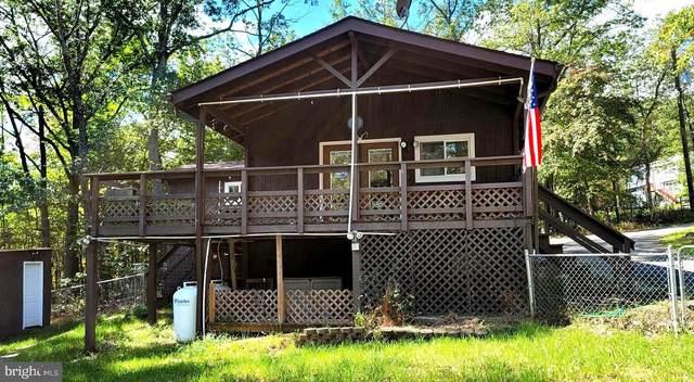 101 Opossum Trail, WINCHESTER, VA 22602 (#VAFV159738) :: Mortensen Team