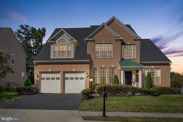 24843 Serpentine Place, STONE RIDGE, VA 20105 (#VALO421480) :: Better Homes Realty Signature Properties