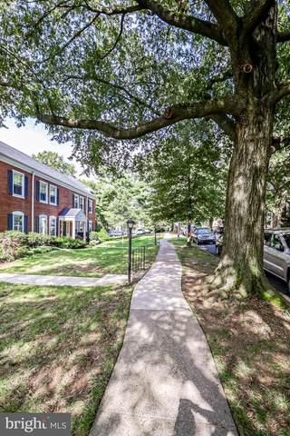 3033 S Columbus Street B1, ARLINGTON, VA 22206 (#VAAR169828) :: Tom & Cindy and Associates