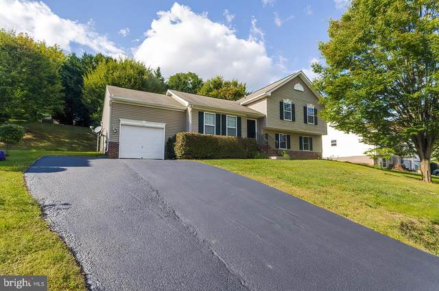 252 Talisman Drive, MARTINSBURG, WV 25403 (#WVBE180528) :: The MD Home Team