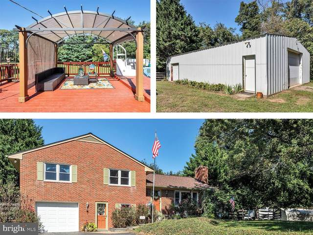 39780 Overlook Knolls Road, LOVETTSVILLE, VA 20180 (#VALO421950) :: Pearson Smith Realty