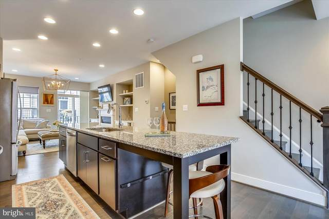 254 Bluemont Branch Terrace SE, LEESBURG, VA 20175 (#VALO421954) :: Tom & Cindy and Associates