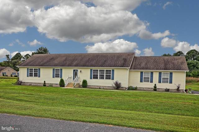 404 S Winding Brooke Drive, SEAFORD, DE 19973 (#DESU169716) :: Ramus Realty Group