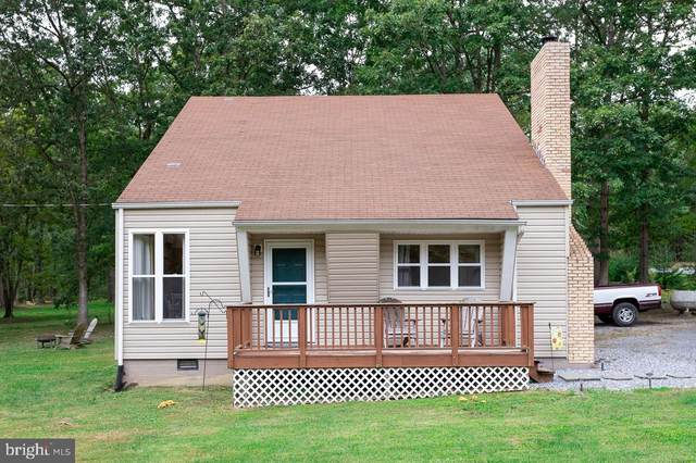 597 Grandview Drive, LURAY, VA 22835 (#VAPA105634) :: RE/MAX Cornerstone Realty
