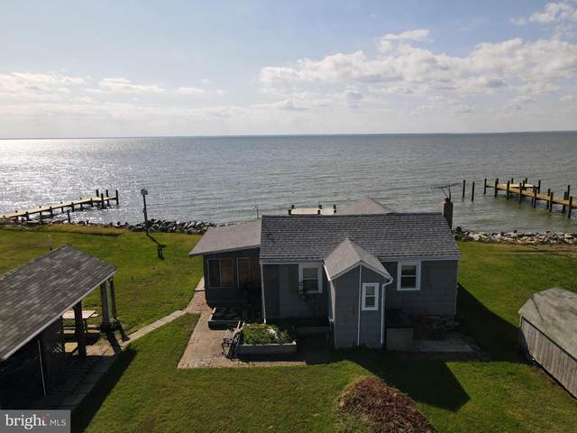 2416 Rippons Road, FISHING CREEK, MD 21634 (#MDDO126114) :: The Redux Group