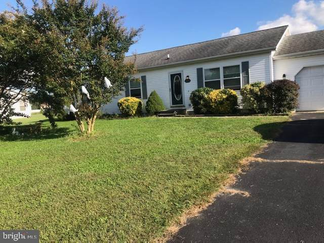 318 Blaine Drive, FELTON, DE 19943 (#DEKT242170) :: Linda Dale Real Estate Experts