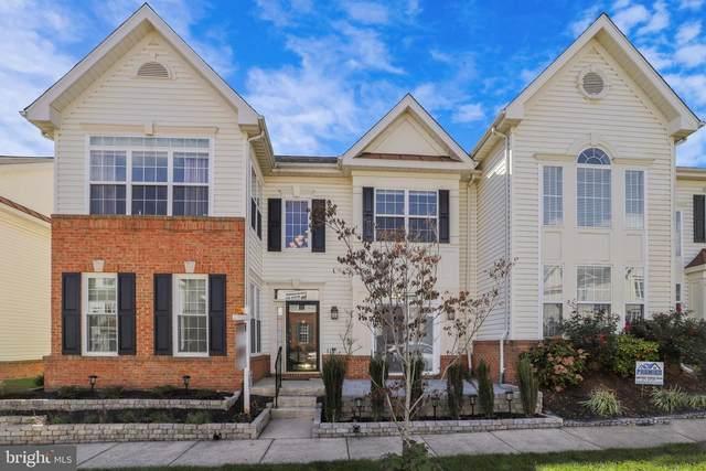 44221 Shehawken Terrace, ASHBURN, VA 20147 (#VALO422326) :: Tom & Cindy and Associates