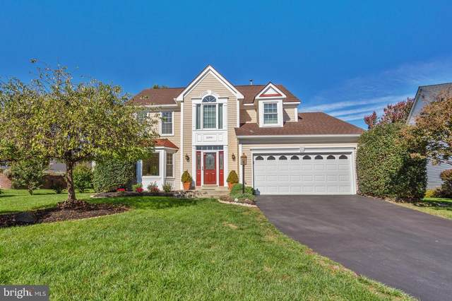 20941 Cox Mills Court, ASHBURN, VA 20147 (#VALO422468) :: AJ Team Realty