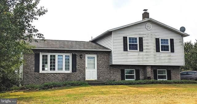 3513 Berne Road, HAMBURG, PA 19526 (#PABK364802) :: Linda Dale Real Estate Experts
