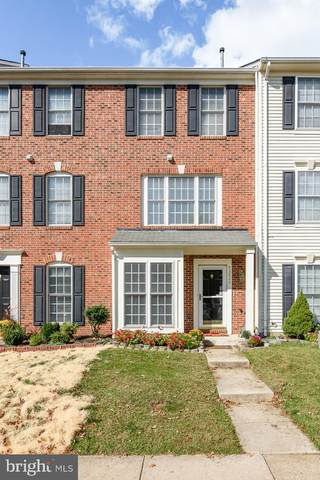 42826 Shaler Street, CHANTILLY, VA 20152 (#VALO422628) :: Great Falls Great Homes