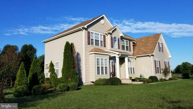 11660 Pipers Lane, MILTON, DE 19968 (#DESU170490) :: Certificate Homes