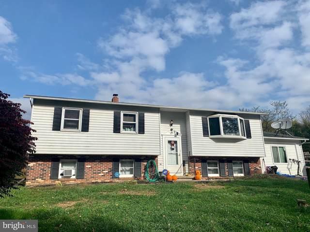 3 Ridgewood Lane, OLEY, PA 19547 (#PABK365248) :: LoCoMusings