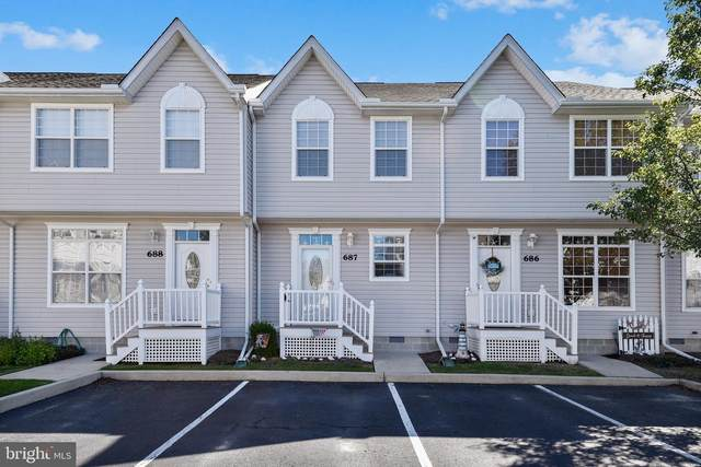 38423 Driftwood #687, FRANKFORD, DE 19945 (#DESU171122) :: RE/MAX Coast and Country