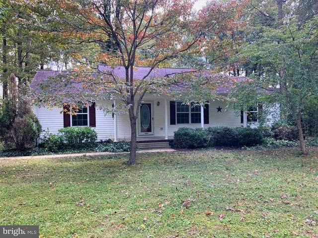 8291 Somerset Road, DENTON, MD 21629 (MLS #MDCM124644) :: Brian Gearhart with Benson & Mangold Real Estate