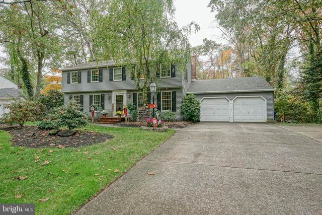 226 Sunny Jim Drive, MEDFORD, NJ 08055 (#NJBL384258) :: Holloway Real Estate Group