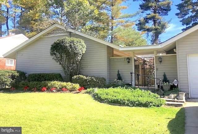 10005 Parkwood Drive, BETHESDA, MD 20814 (#MDMC730618) :: Dart Homes
