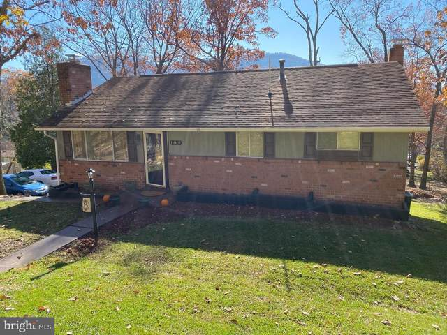 11807 Aster Avenue, CUMBERLAND, MD 21502 (#MDAL135588) :: Gail Nyman Group