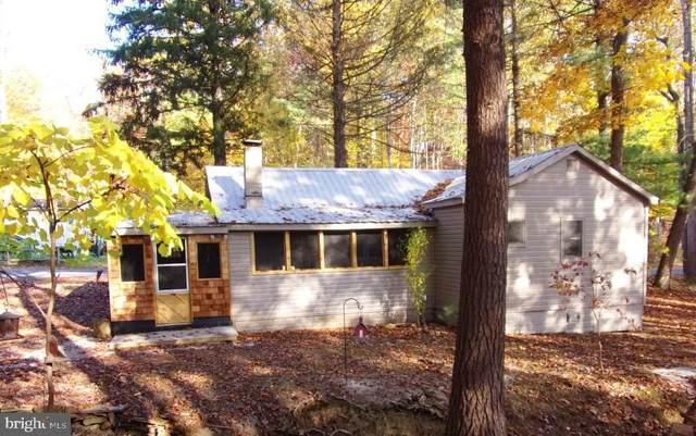 10681 Buffalo Trace, NEWPORT, PA 17074 (#PAPY102784) :: The Joy Daniels Real Estate Group