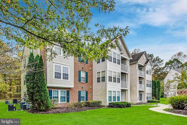 8702 Natures Trail Court #203, ODENTON, MD 21113 (#MDAA450574) :: The Riffle Group of Keller Williams Select Realtors