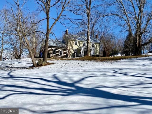 38085 Homestead Farm Lane, MIDDLEBURG, VA 20117 (#VALO424566) :: Peter Knapp Realty Group