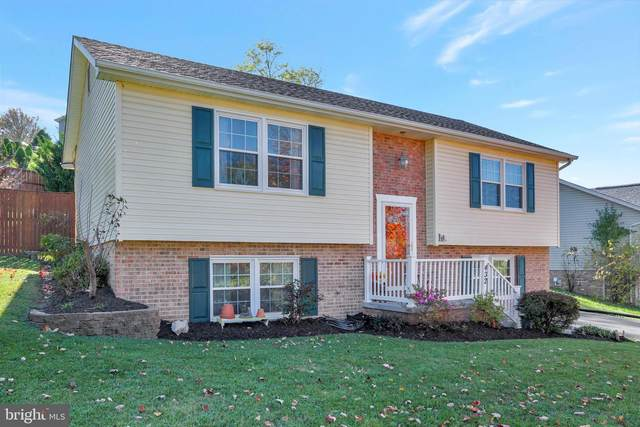 432 E Fairchild Drive, STRASBURG, VA 22657 (#VASH120764) :: Shawn Little Team of Garceau Realty