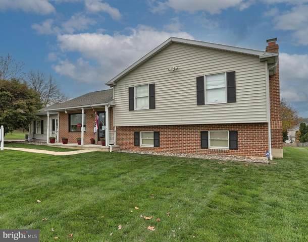 397 Kunkel Avenue, HUMMELSTOWN, PA 17036 (#PADA127428) :: Linda Dale Real Estate Experts
