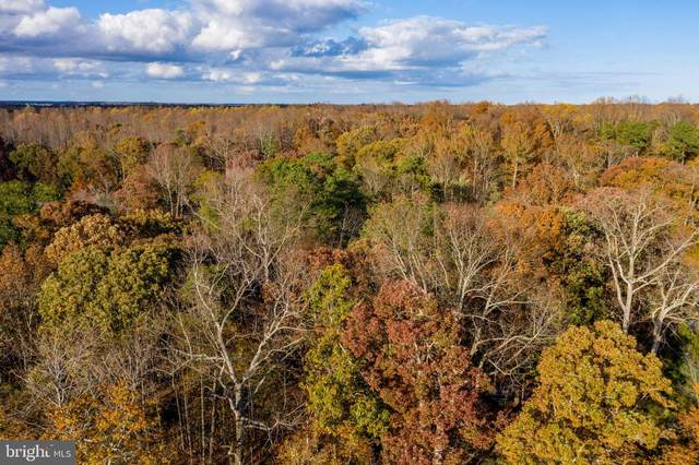 Lot 20 Cedar Ct, DAGSBORO, DE 19939 (#DESU172680) :: Better Homes Realty Signature Properties
