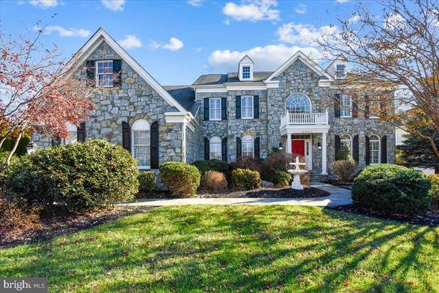 25542 Mimosa Tree Court, CHANTILLY, VA 20152 (#VALO425228) :: Great Falls Great Homes