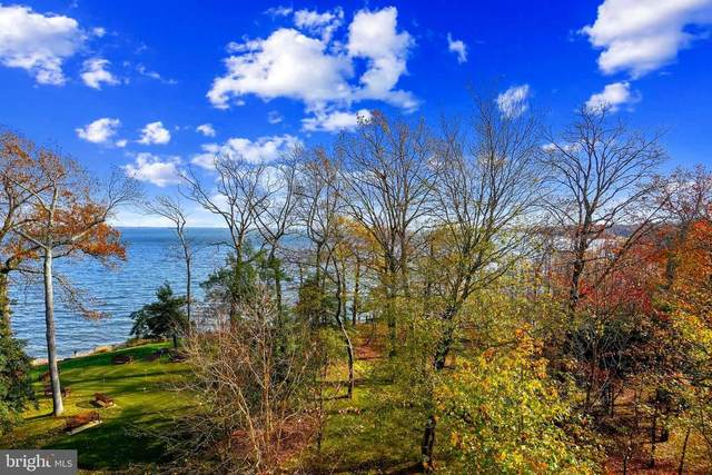 7101 Bay Front Drive #520, ANNAPOLIS, MD 21403 (#MDAA452130) :: Bruce & Tanya and Associates