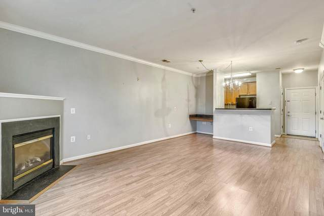 3830 Lightfoot Street #124, CHANTILLY, VA 20151 (#VAFX1166498) :: The Redux Group