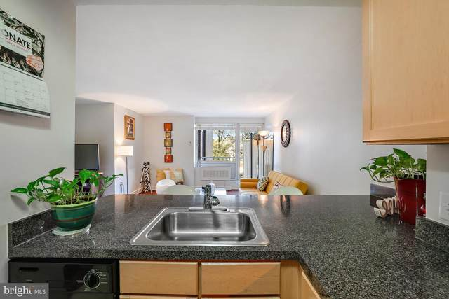 800 4TH Street SW S203, WASHINGTON, DC 20024 (#DCDC496440) :: The Redux Group